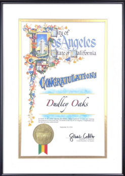 City of Los Angeles - Certificate of Recognition - 